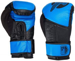 Hayabusa Tokushu Regenesis Boxing Gloves